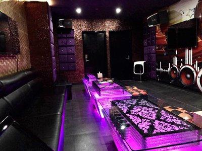 karaoke party sydney 1